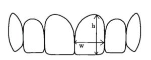 Height versus width of teeth